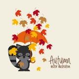 Autum season Stock Photos
