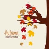 Autum season Royalty Free Stock Photography