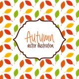 Autum season Stock Images