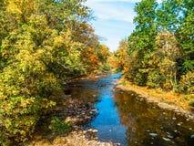 Autum Tohickon Creek Stock Photography