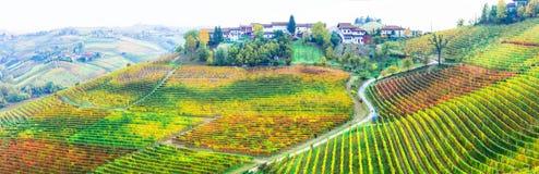 Autum vineyards, Piemonte region, Italy Stock Photography