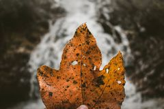 Autum and waterfalls royalty free stock photos