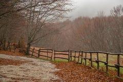 Autumanl krajobraz Zdjęcie Royalty Free