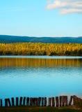 Autumn湖和桦树森林 免版税库存照片