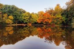Autumn湖和森林 免版税图库摄影