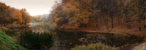 Autumn湖在森林里 库存图片
