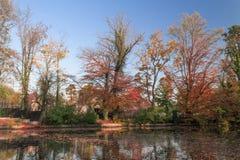 Autumn湖场面 库存图片