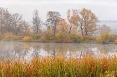 Autumn湖薄雾薄雾在秋天盖了湖 免版税库存照片