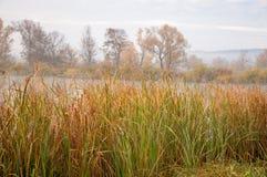 Autumn湖薄雾薄雾在秋天盖了湖 库存图片