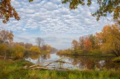 Autumn湖薄雾薄雾在秋天盖了湖 免版税库存图片