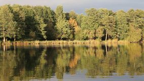 Autumn湖 影视素材