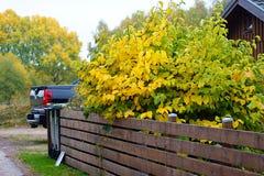 Autumn& x27; 这里s 免版税库存图片