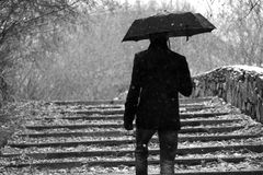 Autumn. Man with a umbrella walks upstairs. black-and-white image Royalty Free Stock Photos