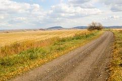 Autumn. Road through an autumn field royalty free stock image
