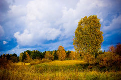 Autumn. Scene on the field Royalty Free Stock Photography