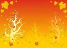 Autumn. Golden autumn, golden maple, new season Stock Image