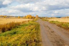 Autumn. Road through a field. Autumn royalty free stock image