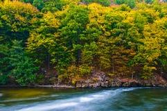 Autumn. Golden Autumn Scene in October Royalty Free Stock Photography