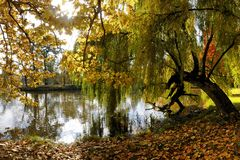 Autumn. Trees reflection in the pond inside Lednice park, Moravia, Czech Republic Stock Photos