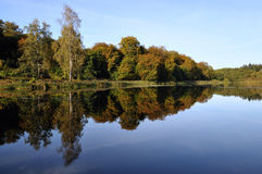 Autumn. At the lake with reflection of trees Royalty Free Stock Image