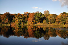 Autumn. By a lake and the leaves are changing color Royalty Free Stock Photo