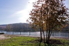 Autumn. River in central Russia. Autumn Stock Photography