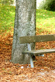Autumn. View of the park bench on some autumn day Royalty Free Stock Photos
