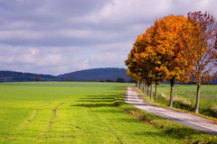 Autumn #14 Royalty Free Stock Images