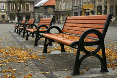 Autumn. Row of benches in an autumn scenery Royalty Free Stock Photos