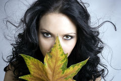 Autumn. Very sexy autumn - realy cool woman Stock Image