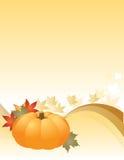 Autumn. Pumpkin set among autumn leaves Stock Images