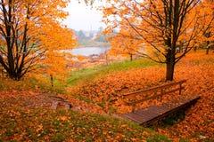 Free Autumn Stock Image - 1553531