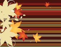 Autumn. Leaves set on an autumn colored striped background Royalty Free Stock Photos