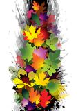 Autumn. Colorful autumn leaves  illustration Stock Photos