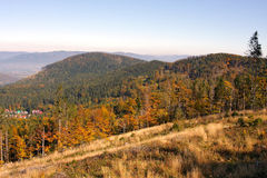 Autumn. The mountain autumn landscape with colorful forest stock images