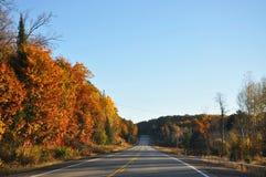 Autumn. Royalty Free Stock Photo
