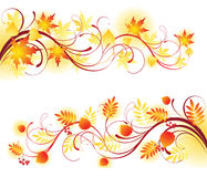 Autumn. Design elements -  illustration Royalty Free Stock Photography