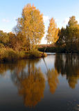Autumn. A sunny day in middle of an autumn. The Moscow area royalty free stock images