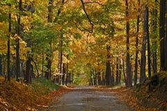 Autumn. Beautiful autumn scene on a country road in Metamora Michigan stock image