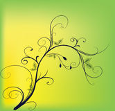 Autumn. Beautiful branch on a yellow background Royalty Free Stock Photo