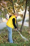 Autumn. Mature woman raking leaves in a garden Stock Images