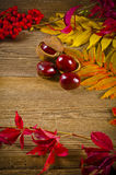 Autumn. Summer there comes the golden autumn Royalty Free Stock Photo