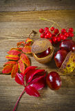 Autumn. Background with sheets and chestnuts Stock Photo