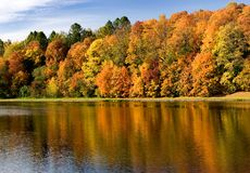 Autumn. Fall foliage in many colors of the Moskva River Rublevskoe settlement Ilinskoe Stock Image