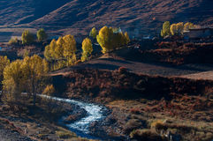 Autumn. The autumn beautiful scenery of the valley Stock Images