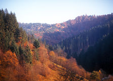 Autumn. Autumn in mountains. Carpathian mountain range, Ukraine Royalty Free Stock Image