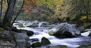 Autumn. Trees and a stream in the forest at Benxi, northeast China Royalty Free Stock Photo