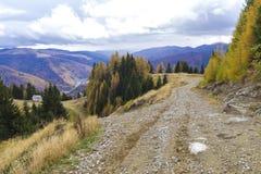 Autumn. Forrest road in sinaia mountains Royalty Free Stock Photos