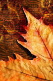 Autumn. Grunge leaves,autumn leaves over wooden Stock Photos