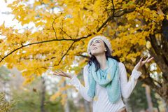 Autumn. Young woman in the autumn forest stock photo